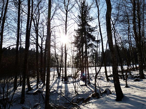 wintery spring